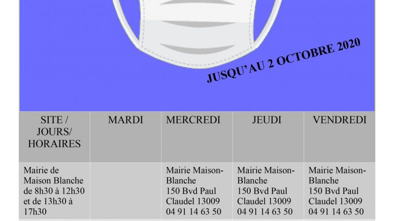 distribution masques Mairie 910